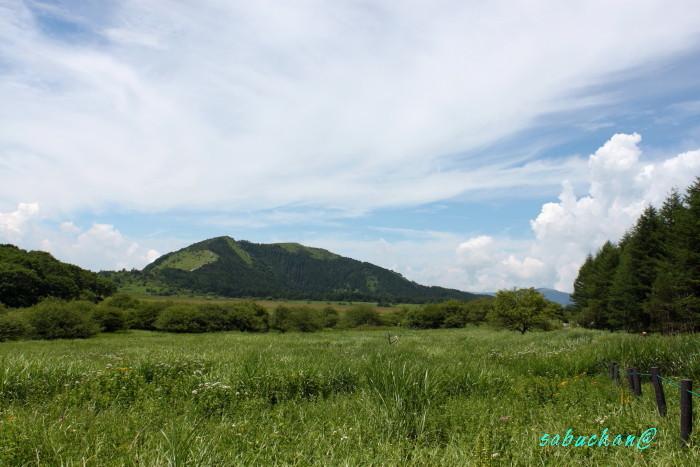 八島湿原 (61).JPG