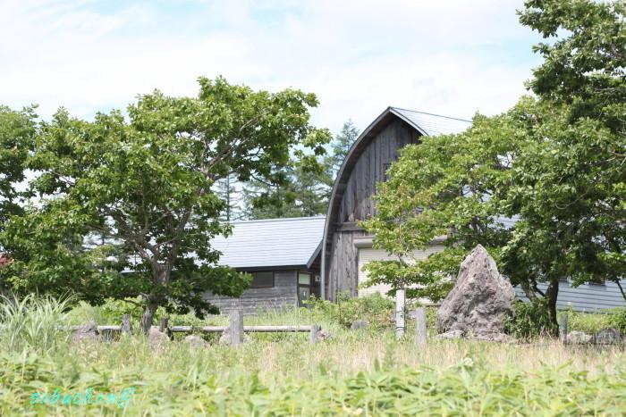 八島湿原 (85).JPG
