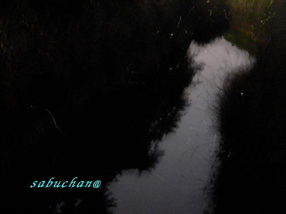 無題-複製画像-01.jpg