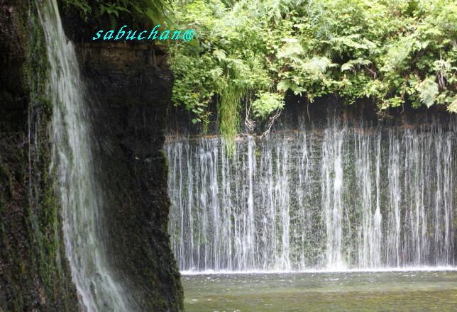 白糸の滝2 (12).JPG