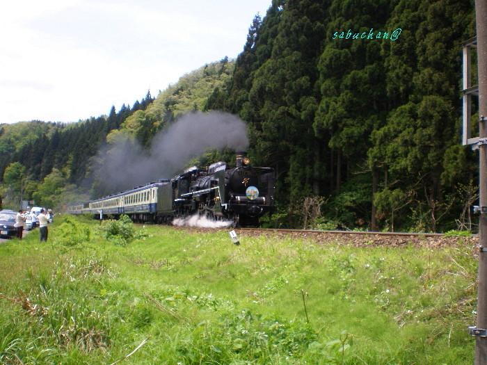 SLD57貴婦人 (2).jpg